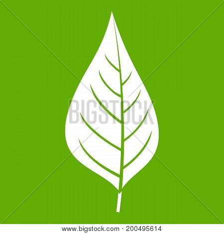 Apple tree leaf icon white isolated on green background. Vector illustration