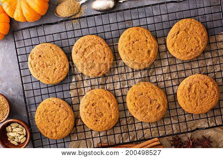 Fall snickerdoodle cookies with pumpkin and cinnamon overhead shot