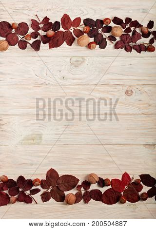 Flat lay frame of autumn crimson leaves hazelnuts and walnuts on a light wooden background. Selective focus.