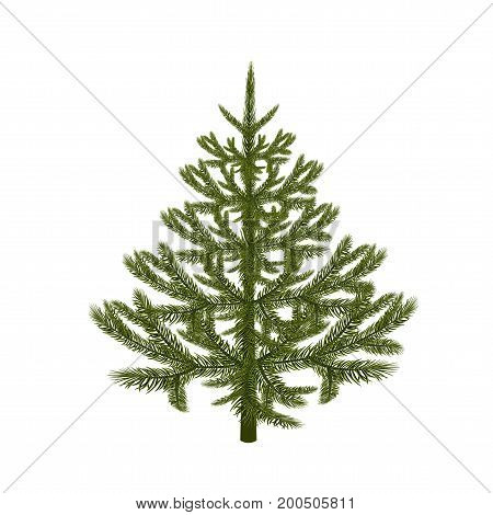 Symbol of the New Year. Picture of a magnificent spruce without a mesh and a gradient. Isolated against white background. Vector illustration