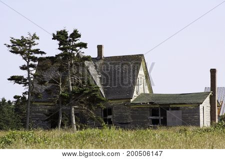 Wide view of an old abandoned house with overgrown greenery near Charlottetown, Prince Edward Island on a bright sunny day in August.