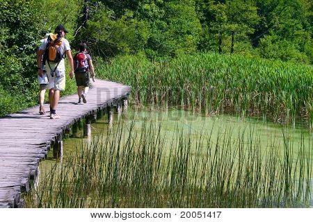 People Walking In A Bridge Of Wood In Plitvice Lakes.