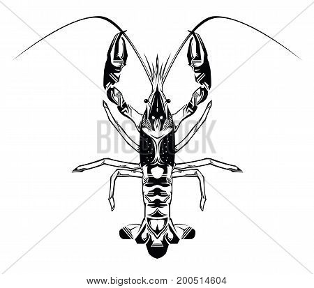 Crayfish abstract vector flat illustration isolated on white background. Fresh seafood icon. vector on isolated