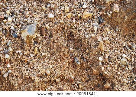 Texture of wet sand with small stones