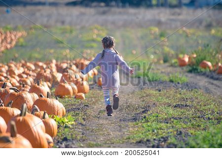 Happy girl in knitted sweater running on the field to choose pumpkin at the farm patch