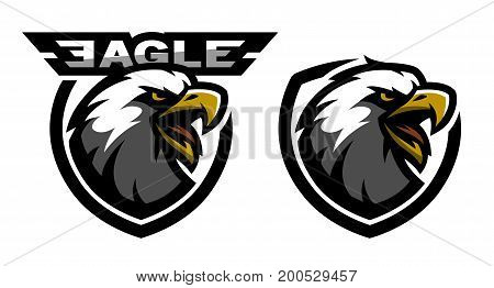 Head of the eagle, sport logo. Two versions. Vector illustration
