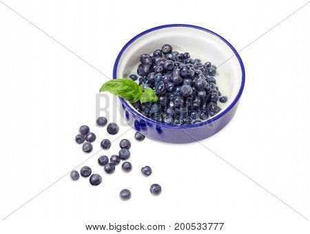 Dessert made of the fresh blueberries and sweetened condensed milk in blue bowl decorated with basil twig and separately several berries beside on a white background
