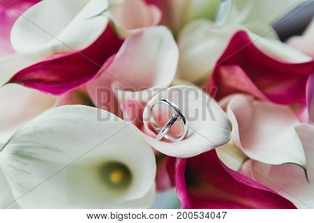 Set of wedding rings in pink and white flowers background