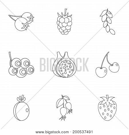 Eco berries icon set. Outline set of 9 eco berries vector icons for web isolated on white background
