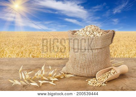 oat flakes in bag, scoop with oat grains, ears of oats on wooden table with field on the background. Ripe field, blue sky with beautiful clouds and sun. Uncooked porridge
