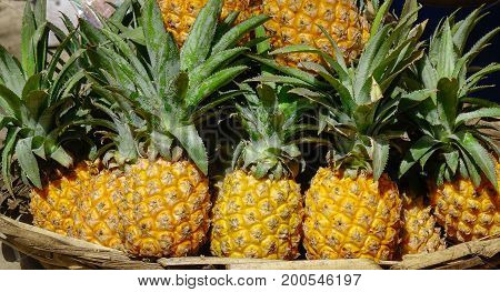 Selling Pineapple At Rural Market In Mauritius