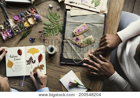 Hands Making Attach Dried Flowers Collection in Notebook Handmade Work Hobby