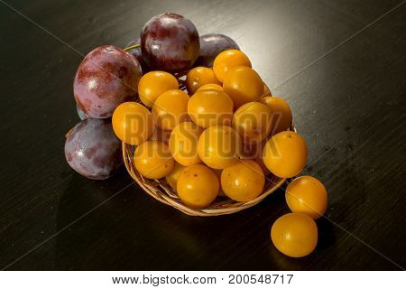 Ripe dark plum and yellow bright plum in the rosette standing on the table ..