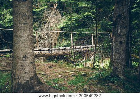 old wooden bridge in the middle of the mountain forest