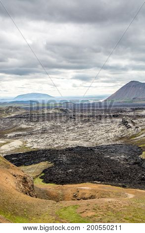 Lava field covered with moss in Iceland.