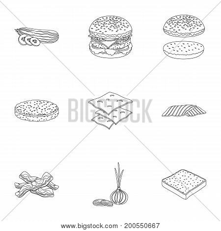 Rolls, cutlets, cheese, ketchup, salad, and other elements. Burgers and ingredients set collection icons in outline style vector symbol stock illustration .
