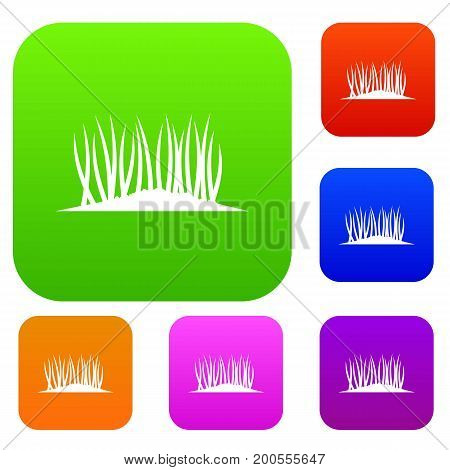 Grass on ground set icon in different colors isolated vector illustration. Premium collection