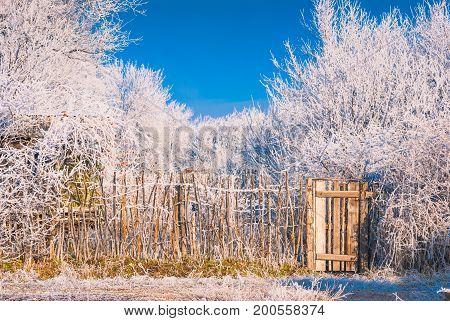 Fence In A Hoar Frost