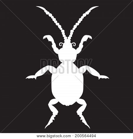 White beetle on a black forehead. vector illustration. Drawing by hand