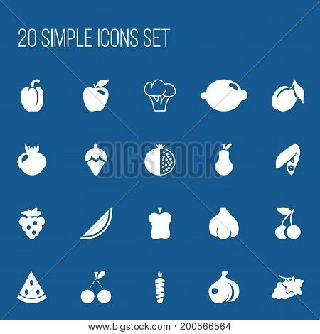 Set Of 20 Editable Fruits Icons. Includes Symbols Such As Seedless, Apricot, Garnet And More