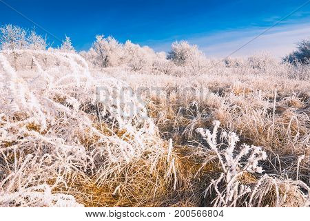 Hoar Frost Valley