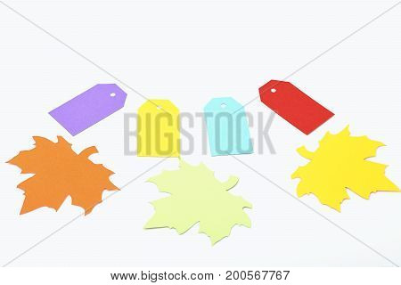 colorful empty shopping tag or blank cardboard label for price sell sale or holiday card with paper autumn maple leaves isolated on white background copy space