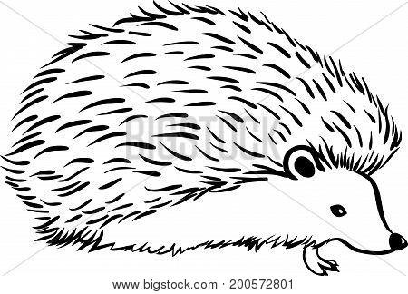 Hedgehog stylization icon logo. Line Monochrome graphics sketch