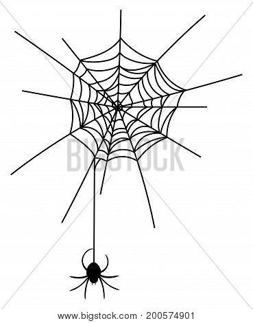 Vector illustration of a spider on a cobweb. Black silhouette of a spider coming down from a web. Drawing for Halloween.