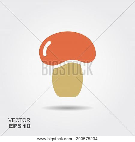 Mushroom flat icon vector, colorful logo illustration with the shadow isolated on white