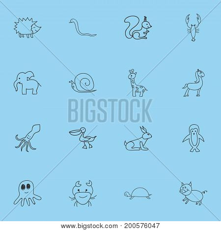 Set Of 16 Editable Animal Doodles. Includes Symbols Such As Chipmunk, Squid, Tentacle And More