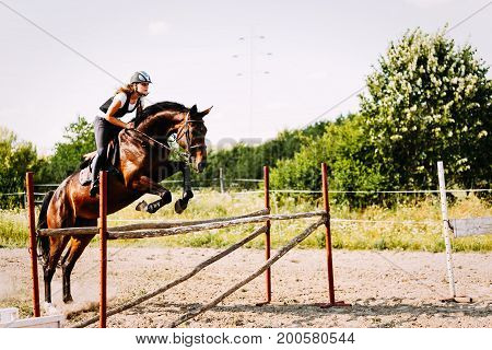 Young female jockey on her horse leaping over hurdle poster
