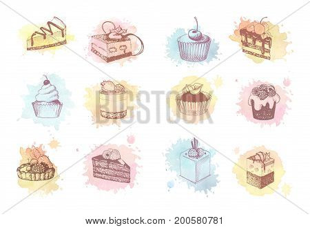 Sketches of scrumptious cupcakes, berry pie and chocolate tiered cake, decorated by butter cream, fresh strawberries and cherries