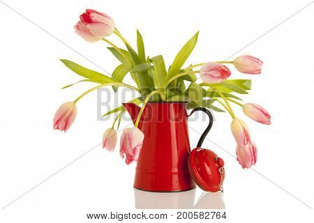 Pink bouquet tulips in typical red vase isolated over white background