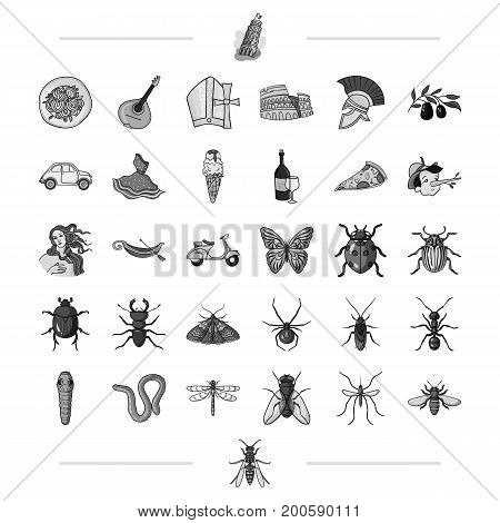 Italy, travel, traditions and other  icon in black style.insect, botany, education icons in set collection.