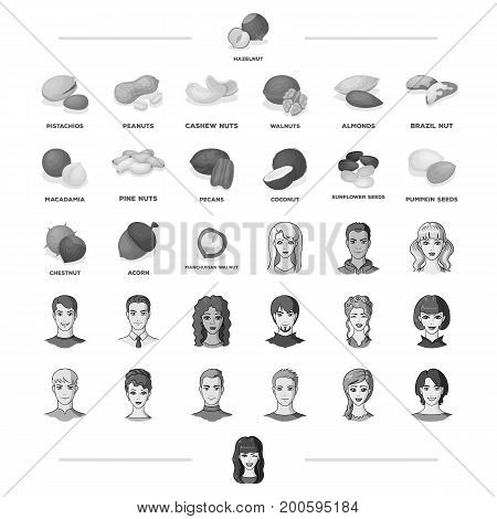 nut, view, grade and other  icon in black style.people, gesture, nationality icons in set collection.