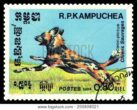 STAVROPOL RUSSIA - August 08 2017 : A Postage Stamp Printed in the Cambodia Shows Hyenic dog (Lycaon pictus) circa 1984
