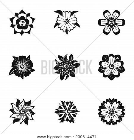 Florist decoration icon set. Simple set of 9 florist decoration vector icons for web isolated on white background