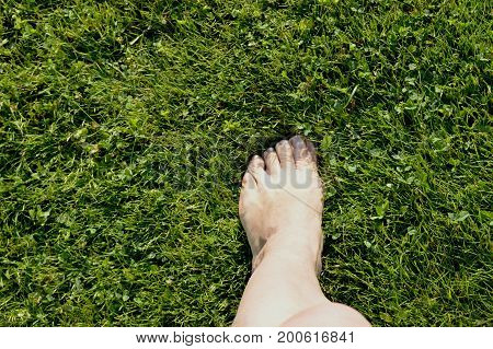 Beautiful female legs standing barefoot on green grass, concept of ecology.