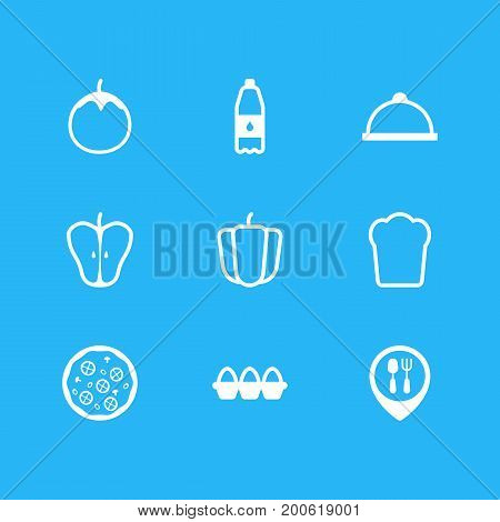 Editable Pack Of Filtered Water, Pizzeria, Container And Other Elements.  Vector Illustration Of 9 Food Icons.
