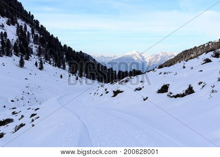 Mountain Panorama And Wintery Snowy Path With Trees In Stubai Alps, Austria