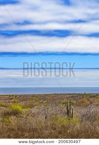 Arid Landscape Scene, Galapagos, Ecuador
