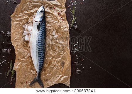 Fresh mackerel fish in ice, herbs and spices on craft paper at black background. Organic cooking ingredients for seafood restaurant. Top view, copy space