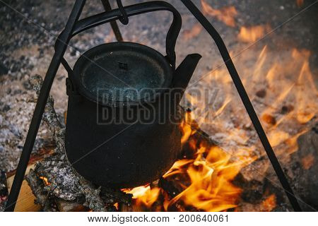 Kettle On The Fire In The Woods, Cooking
