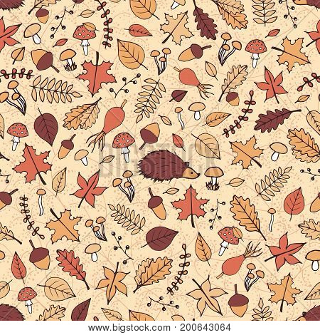Vector hand drawn seamless pattern with autumn elements: foliage berries acorns mushrooms oak and maple leaves rosehips and a hedgehog. Cute fall ornament.