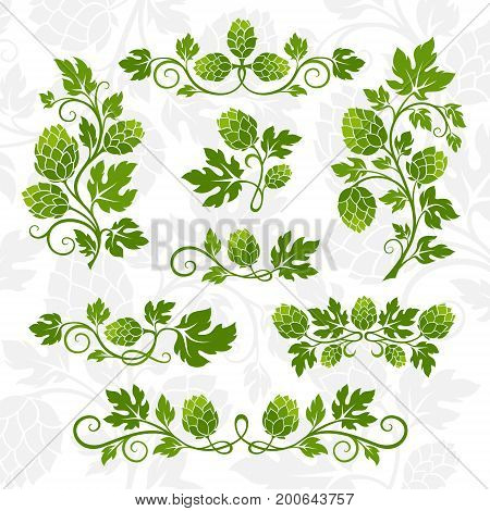 Hop decoration elements. Dividers branches with leaves and hop cones.