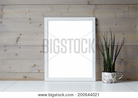 Isolated interior shot of decorative fresh green plant in pot and blank photo frame with copy space for your picture content or promotional information resting on white shelf at wooden wall.