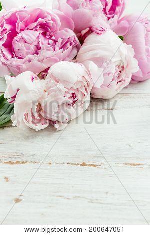 Fresh Bunch Of Pink Peonies