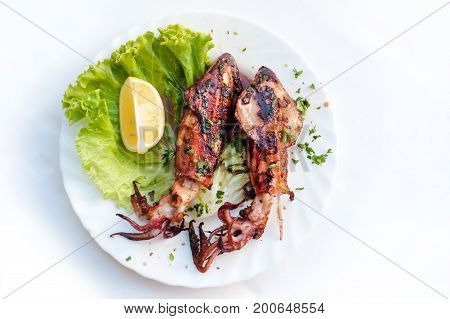Plate of grilled squid, traditional Croatian food specialties