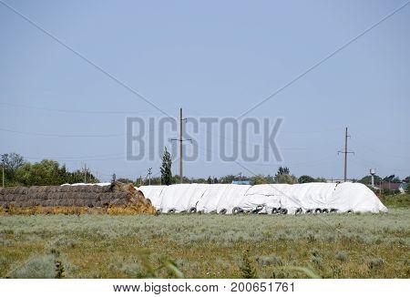 Skird Of Bales Of Hay. Storage Of Hay In The Open Air.