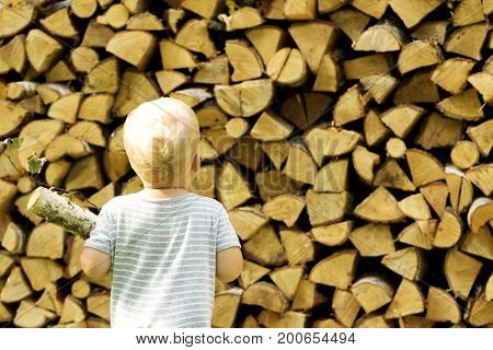 One year toddler carries firewood back view. Backgorund of firewood.